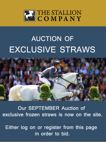 Auction of Exclusive Straws